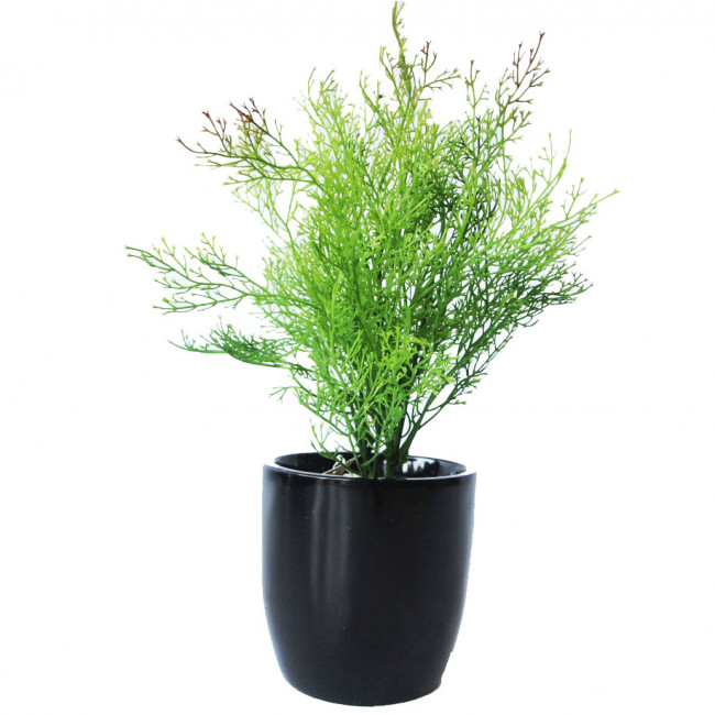 NWTURF ARTIFICIAL CORAL FERN 40CM COMPLETE IN FIBREGLASS POT