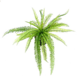 NWTURF ARTIFICIAL BOSTON FERN 65CM UV STABILISED 31 LEAVES
