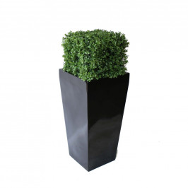 NWTURF PREMIUM DELUXE BOXWOOD HEDGE 105M TALL WITH FIBREGLASS POT