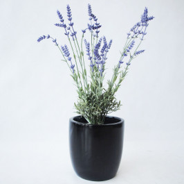 NWTURF  ARTIFICIAL LAVENDER BUSH 59CM COMPLETE IN FIBREGLASS POT