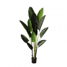 NWTURF ARTIFICIAL 1.8M TRAVELLER PALM WITH REAL TOUCH LEAVES